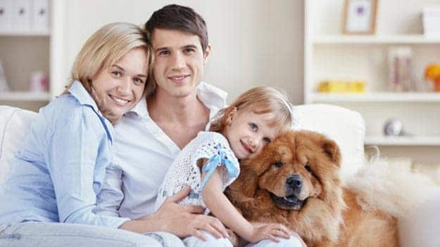 Wills & Trusts dog-young-family Direct Wills Boscombe